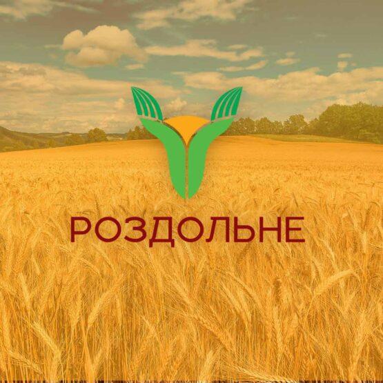"""Разработка логотипа для компании """"Раздольное"""""""