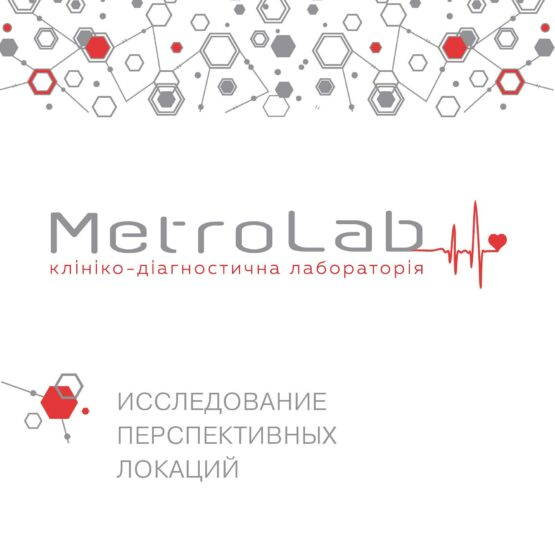 Исследование перспективных локаций MetroLab