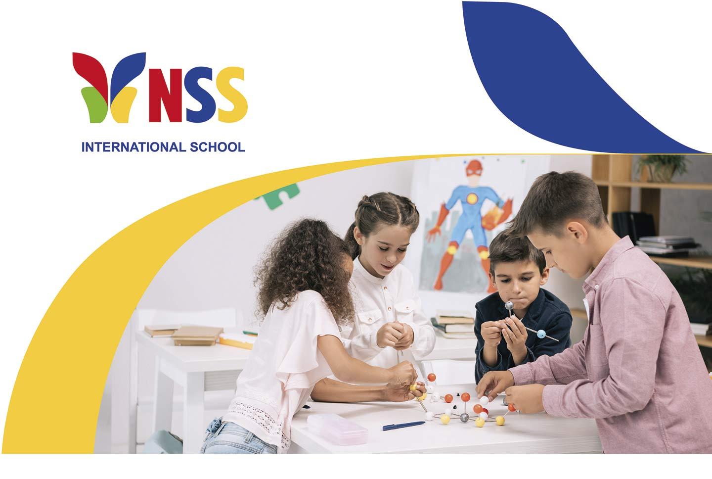 Фирменный стиль для NSS School
