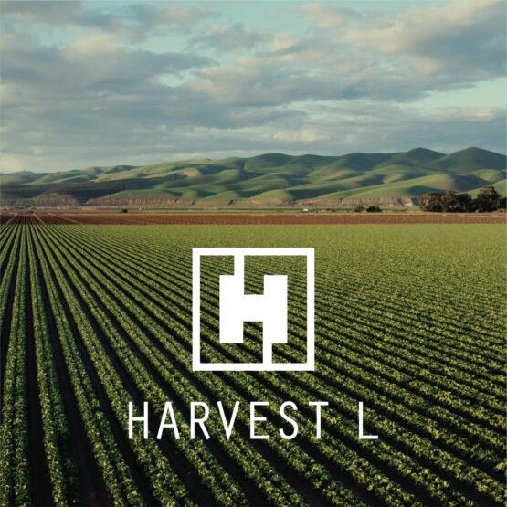 Harvest L - миниатюра